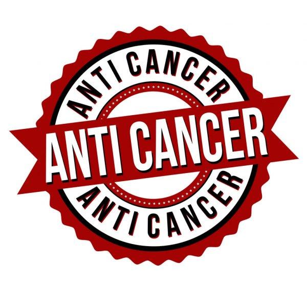 Anti Kanker - sansevieria tanaman lidah mertua